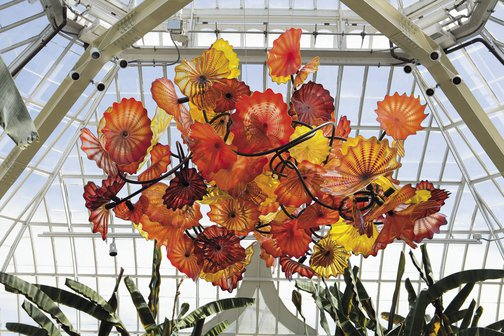 Dale Chihuly Glass Chandeliers Blown Glass Art – Glass Chandelier Artist