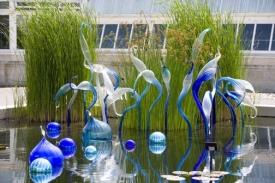 Blue Herons, Walla Wallas, and Reichenbach Mirrored Balls 2006