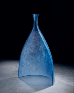 Blue Revealed 2008 by Daniel Clayman