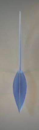 Cobalt Blue Lute 2008