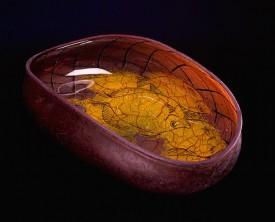 William Morris : Fish Hooks, Traps & Lau Laus